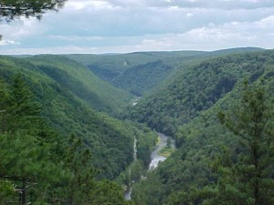 Pine Creek Gorge - Photo by S. Webster