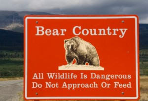 Bear Country - All wildlife is dangerous. Do not approach or feed.
