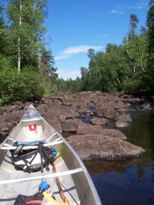 Picture taken from siting inside a canoe, looking up an unnavigable stream.