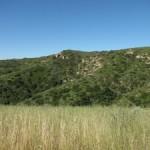 Laguna Ridge Trail, California
